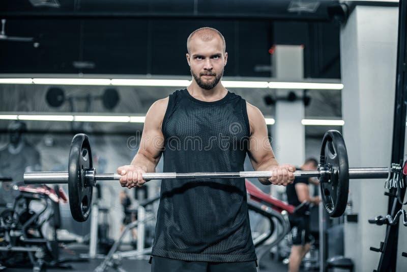 解决在健身房的肌肉人做与杠铃的锻炼在二头肌,强的男性 库存图片