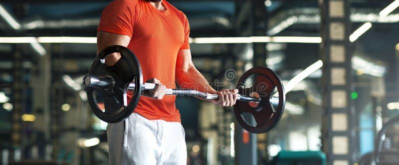 解决在健身房的肌肉人做与杠铃的锻炼在二头肌 免版税库存照片