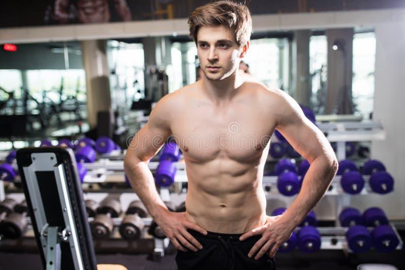 解决在健身房的肌肉人做锻炼在三头肌,强的男性赤裸躯干吸收 健身 库存图片