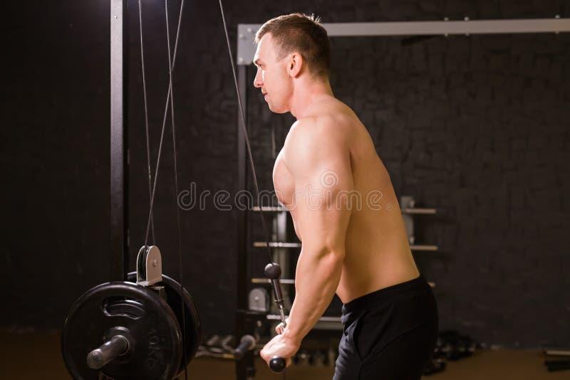 解决在健身房的肌肉人做锻炼,强的男性赤裸躯干吸收 库存图片