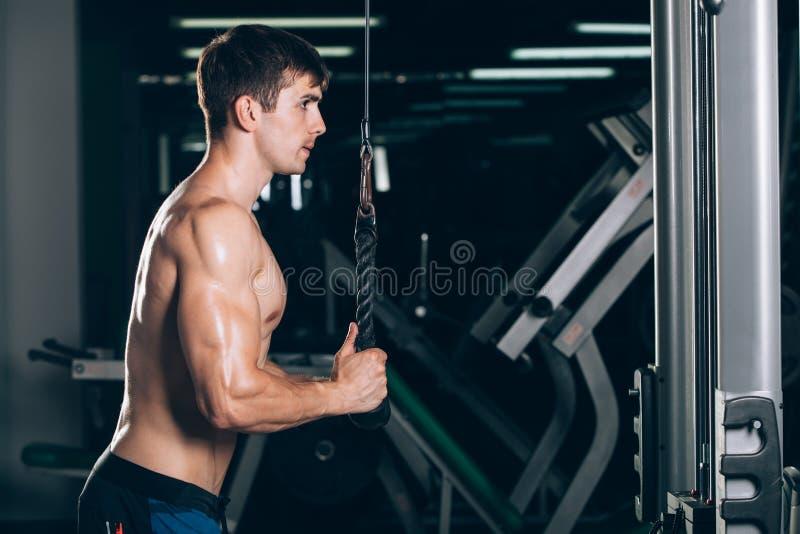 解决在健身房的肌肉人做锻炼在三头肌,强的男性赤裸躯干吸收 免版税库存照片
