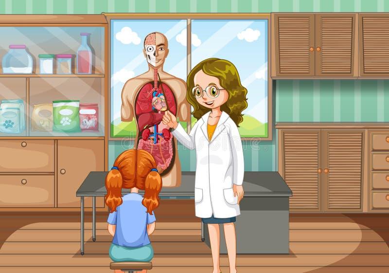 解释人的解剖学的医生 皇族释放例证