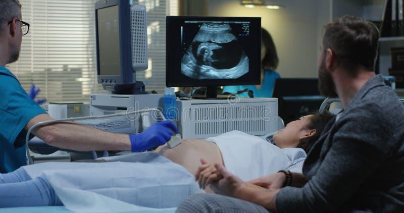 解释和显示超声波扫描的医生结合 免版税库存图片
