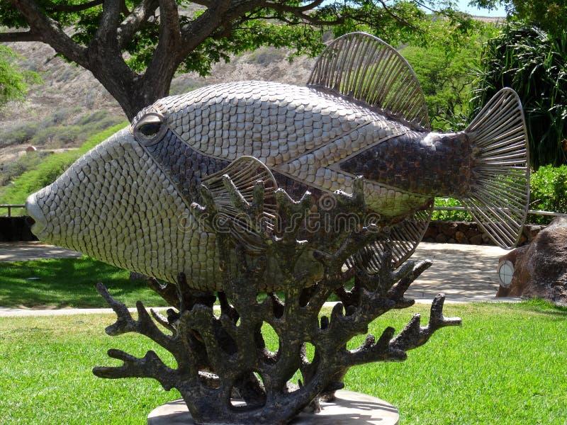 触发器鱼Humuhumu nukunuku apua'雕象 免版税库存图片