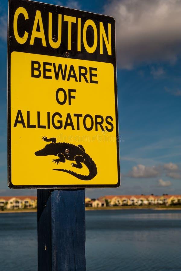 警告,当心鳄鱼-标志 免版税库存照片