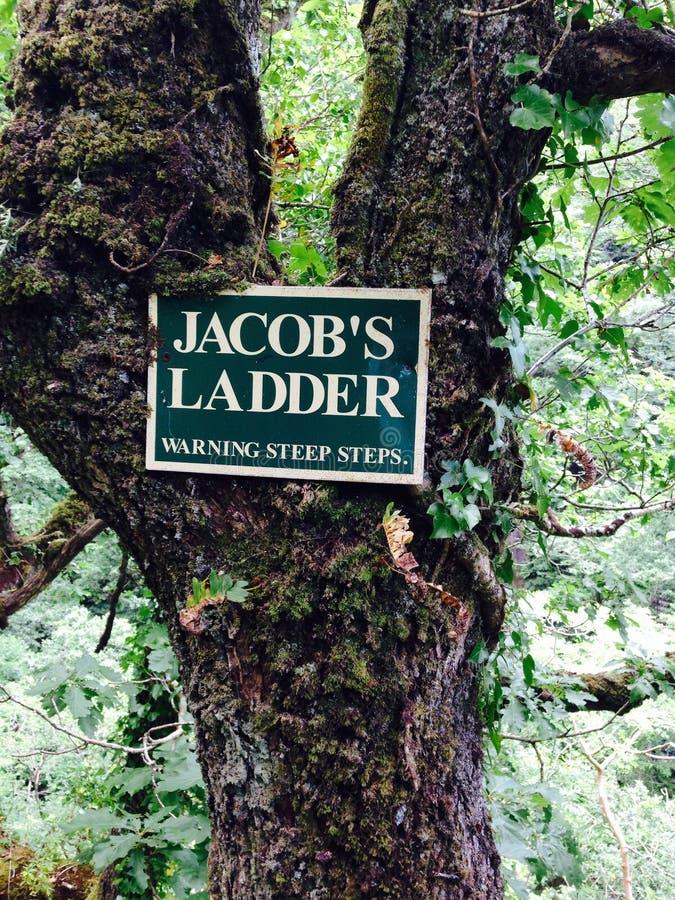 警告Jacobs的梯子陡峭的步 免版税库存图片