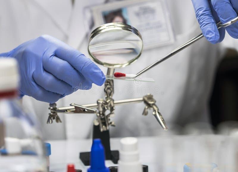 警察专家在实验室里科学家提取血液踪影在一个拖把的分析的 库存照片