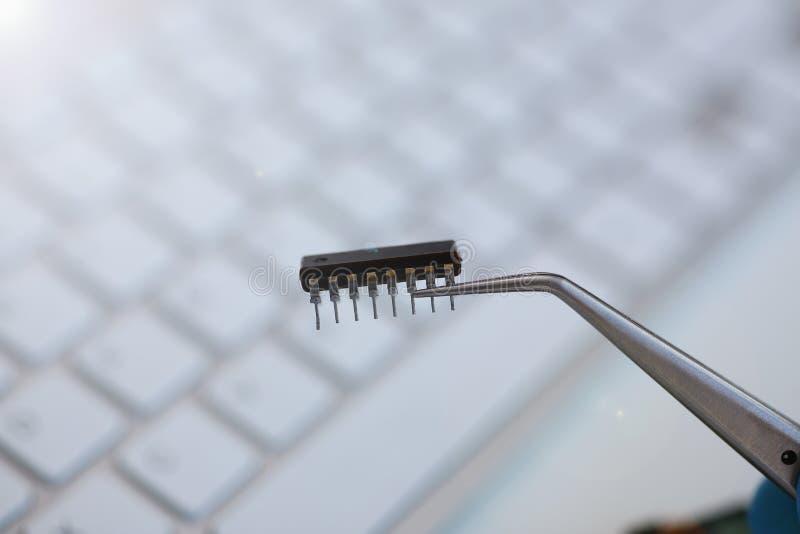 计算机修理服务的雇员 免版税库存照片