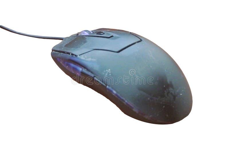 计算机老鼠的射击 免版税库存照片