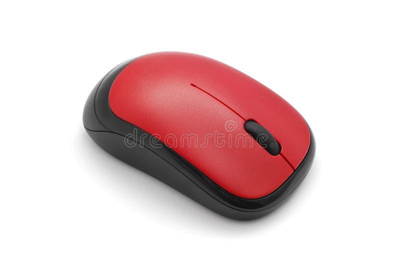 计算机老鼠 库存照片