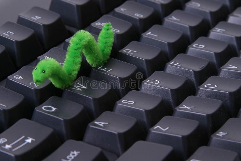 计算机蠕虫 免版税图库摄影
