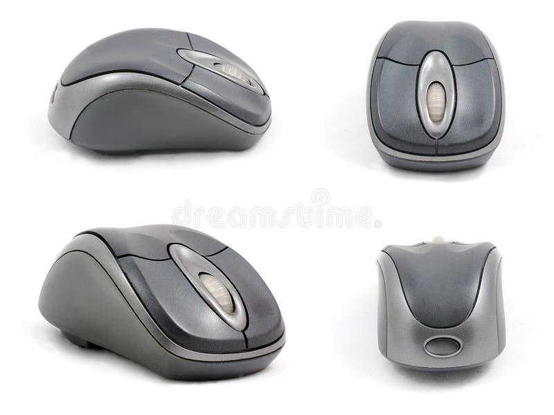 计算机详细资料四高鼠标端 免版税库存图片