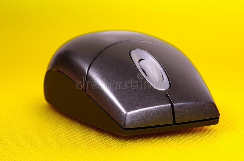 计算机鼠标 库存图片
