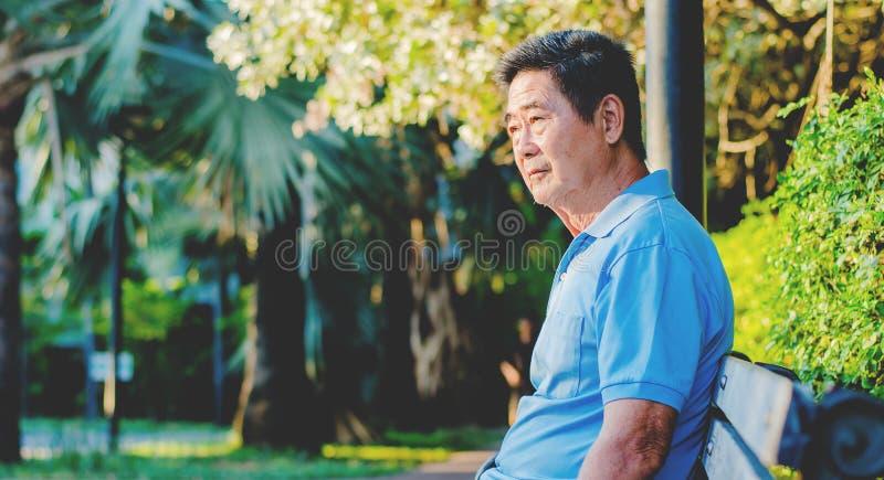 认为亚裔资深的绅士,当查寻和坐与放松的一个长木凳在一个公园在一好日子时 免版税库存照片