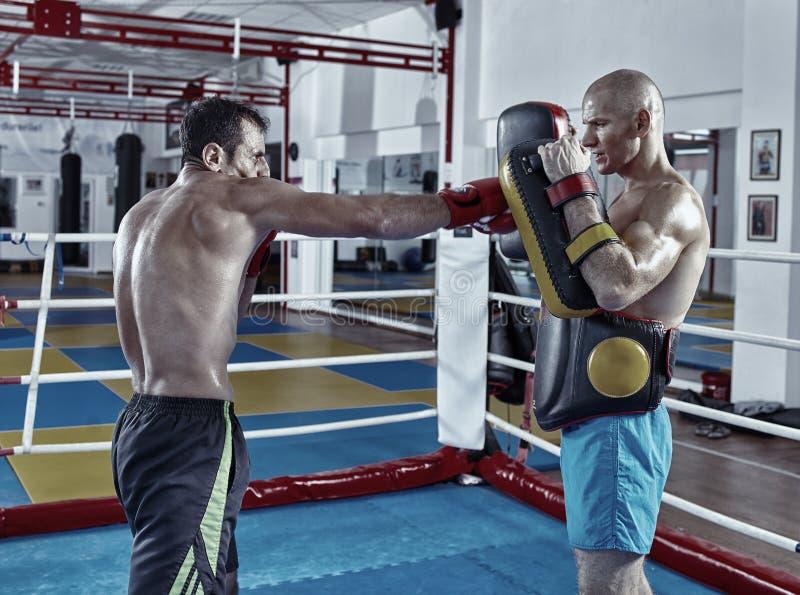 训练在圆环的Kickbox战斗机 图库摄影