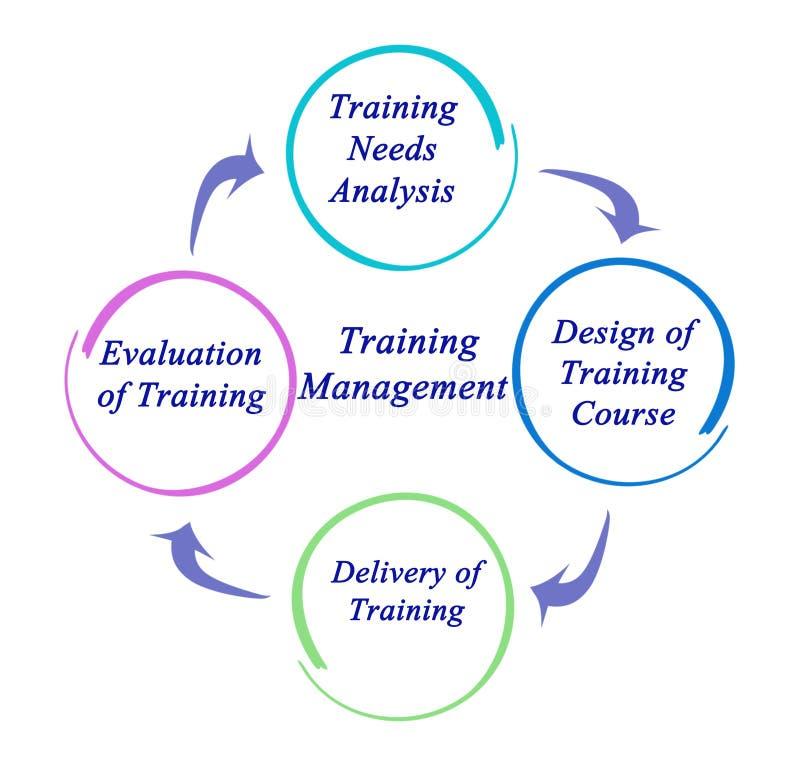 训练管理组分  库存例证