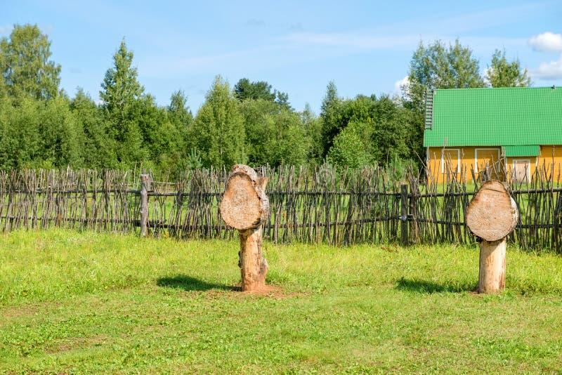 训练箭头和矛的木目标 免版税库存图片