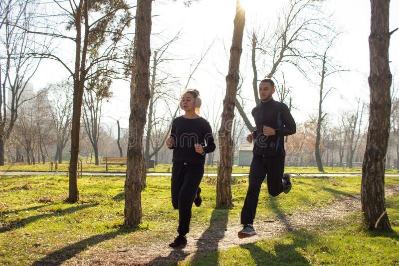 训练inautumn公园的年轻赛跑者夫妇  图库摄影