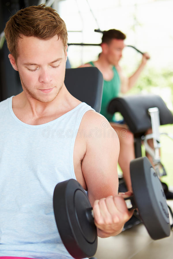 训练在与重量的健身房的两个年轻人 库存照片
