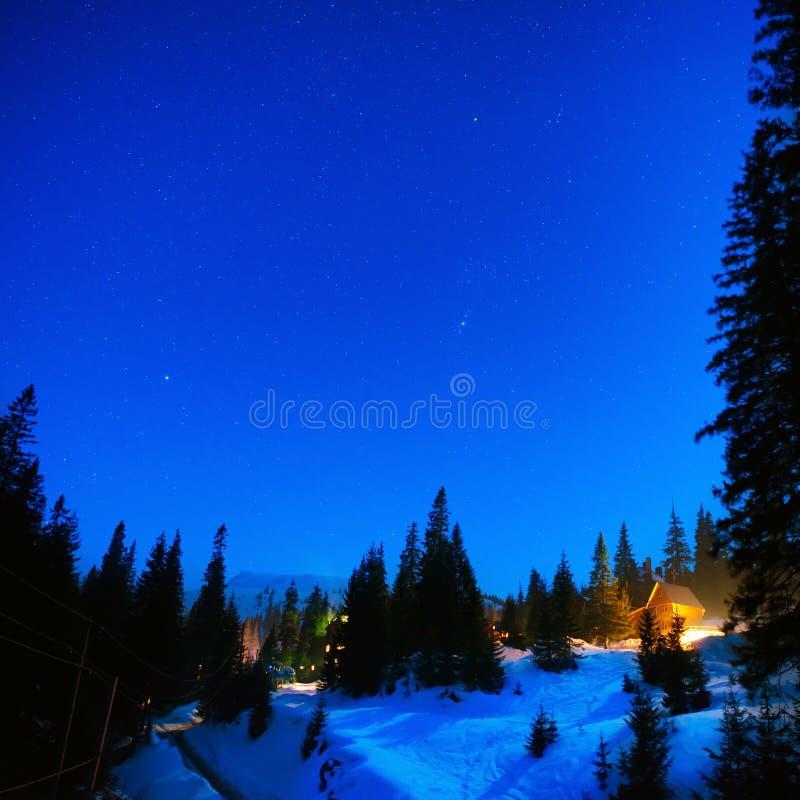 议院在夜冬天森林里 图库摄影