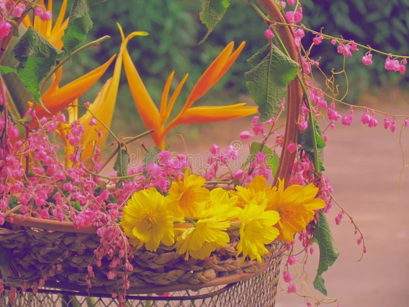 许多一起五颜六色的花在一辆老自行车的一个篮子 免版税库存照片