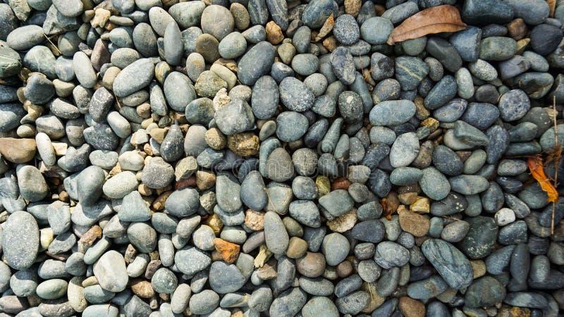 许多与干橙色叶子的灰色,黑,白色小卵石石头纹理背景 免版税图库摄影