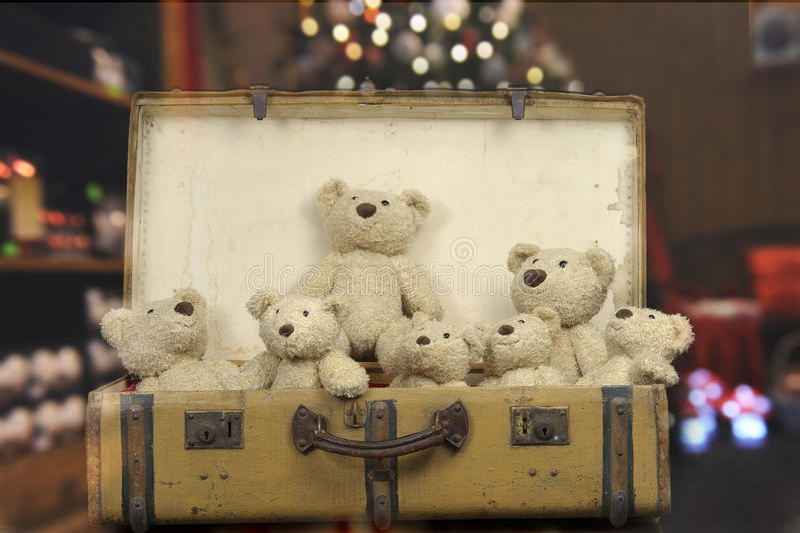 许多在一个老葡萄酒手提箱的玩具熊 库存照片