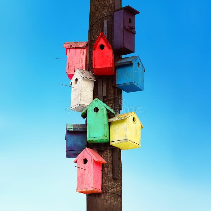 许多在一棵树的五颜六色的木鸟舍反对天空 免版税库存照片