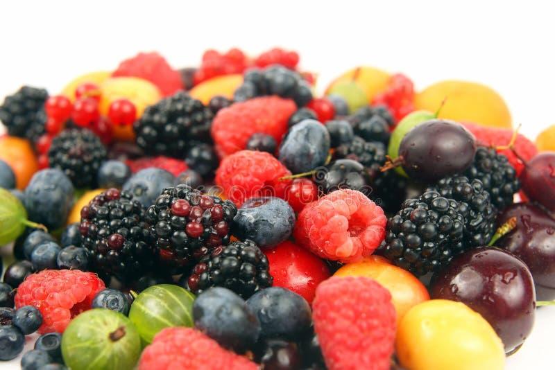 许多在白色背景的新鲜的不同的莓果 库存照片