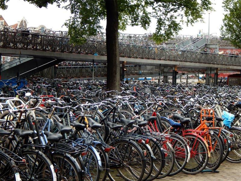 许多在阿姆斯特丹总台的自行车 免版税库存照片