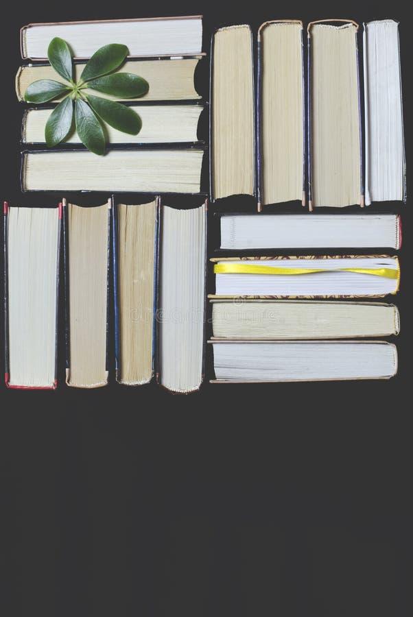 许多多彩多姿的厚实的开放在黑暗的背景书摊 在书是老圆的玻璃和一个开放笔记本有a的 免版税图库摄影
