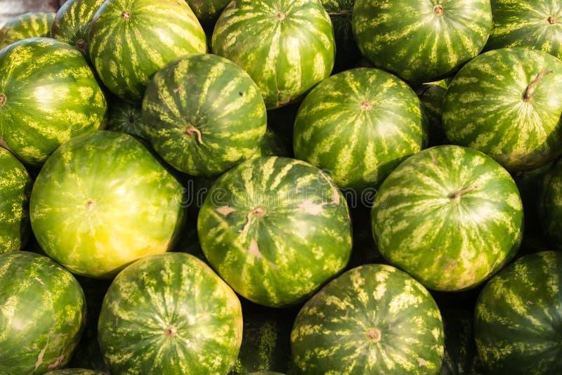 许多大甜绿色西瓜和一个切了西瓜 夏天心情 在一根棍子的西瓜在人的手上背景的 库存图片