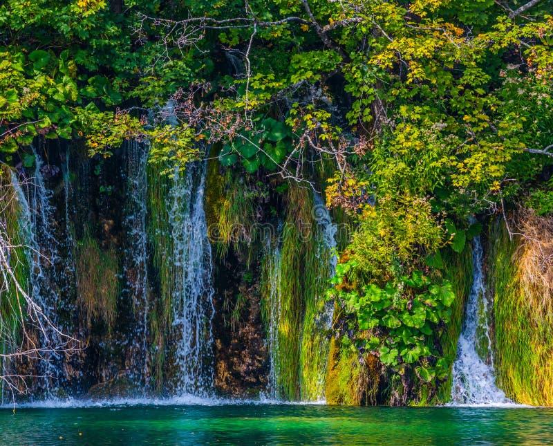 许多小瀑布 库存图片