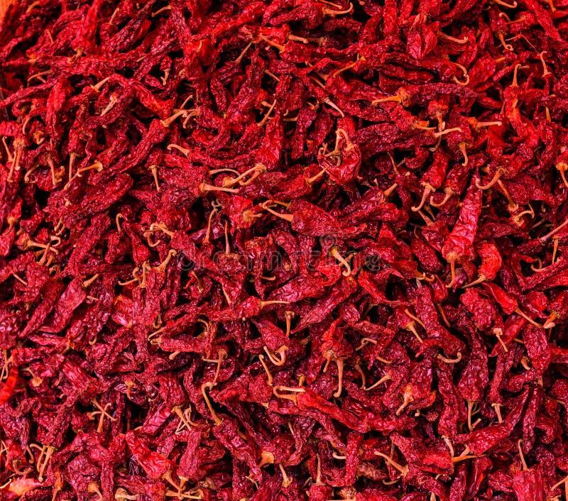许多干辣椒 炽热冷颤的胡椒 免版税库存图片