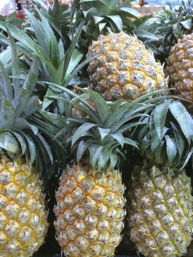 许多成熟菠萝高维生素C,有益于健康 图库摄影