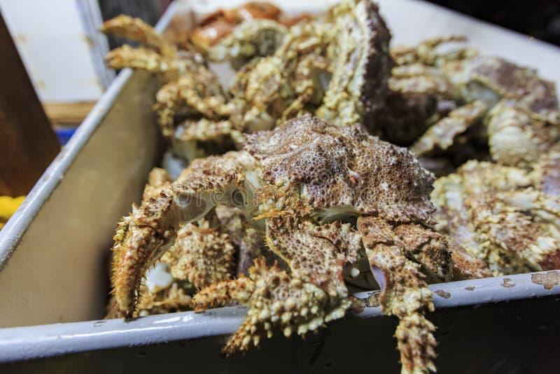 许多新鲜的螃蟹在新港海滨的鱼市上 库存照片