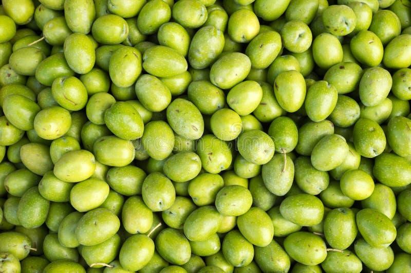 许多新鲜的绿色未加工的橄榄 库存照片