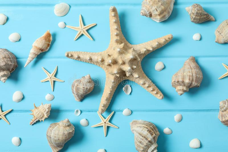 许多海星和贝壳在颜色木背景、特写镜头和顶视图 ?? 库存照片
