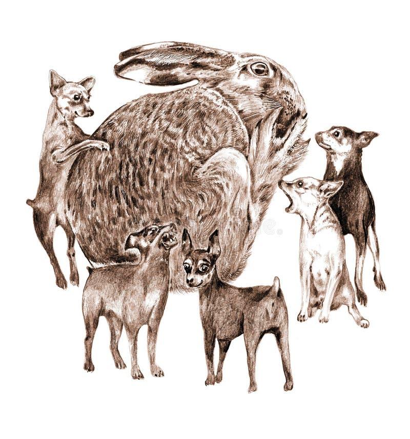 许多狗是野兔的死亡 免版税图库摄影