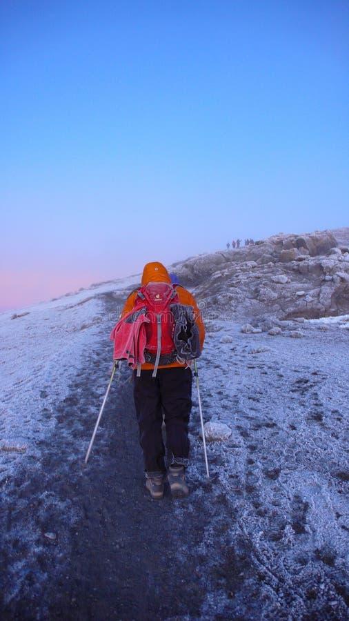 许多登山人和山指南在乞力马扎罗山山顶到达在日出之后的 免版税图库摄影