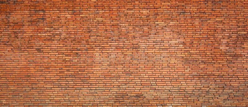 许多砖的砖老纹理墙壁 免版税库存照片