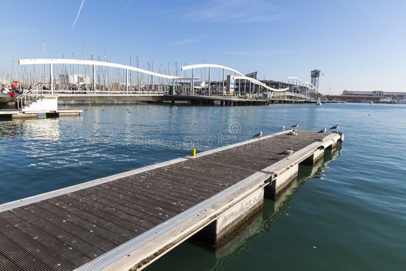 许多等待在码头的海鸥在巴塞罗那口岸的兰布拉de 3月桥梁附近 免版税库存图片