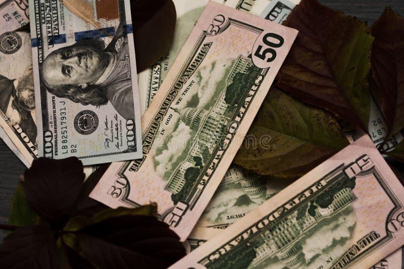 许多美金为与叶子的背景被设置 免版税库存图片