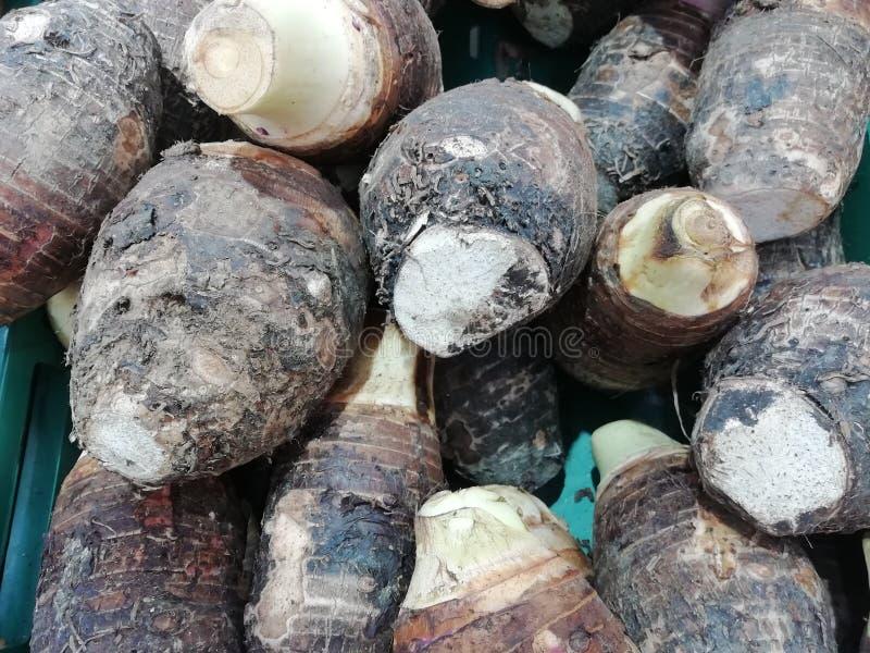 许多芋头特写镜头在果子商店的在市场上 皇族释放例证