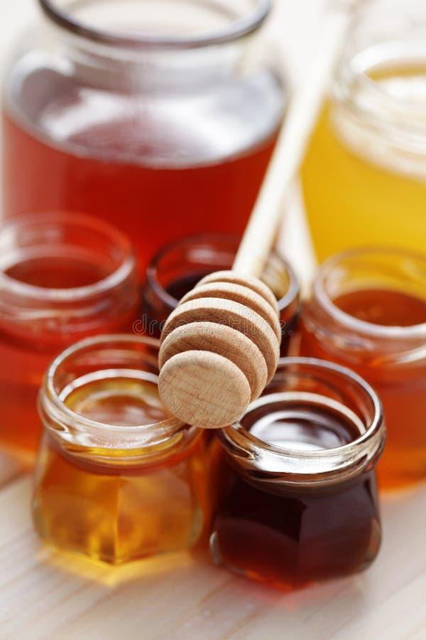 许多蜂蜜 免版税图库摄影