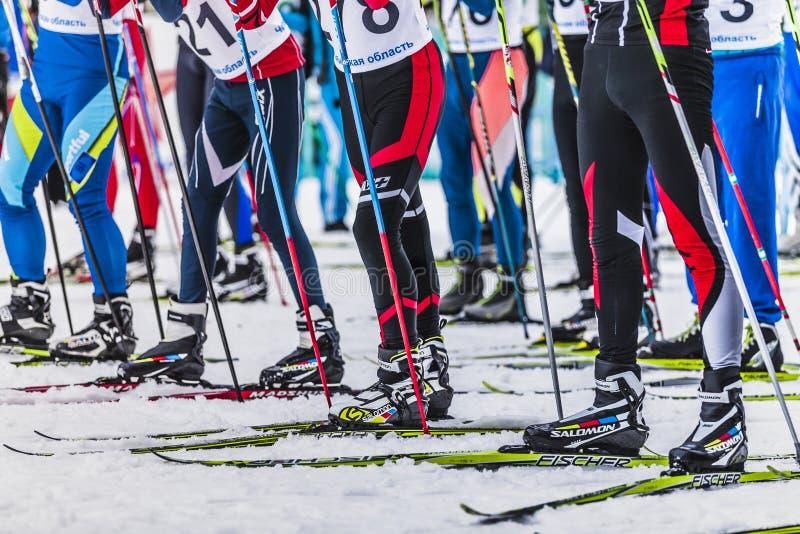 许多起动人运动员滑雪者 免版税库存照片