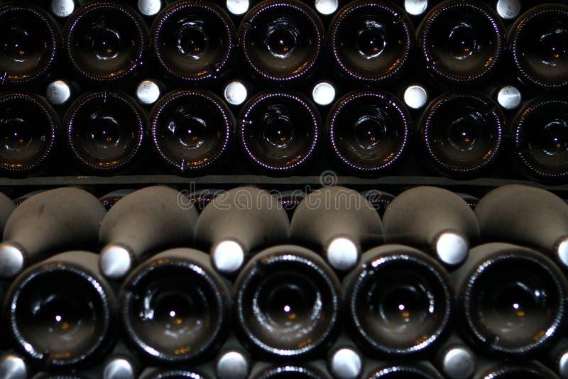 许多香槟瓶,在葡萄酒库关闭在最前面的视图 图库摄影