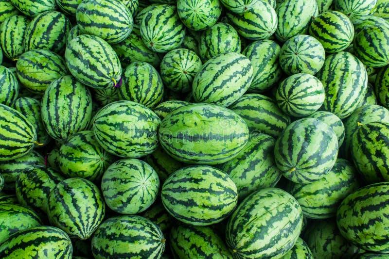 许多绿色甜西瓜 图库摄影