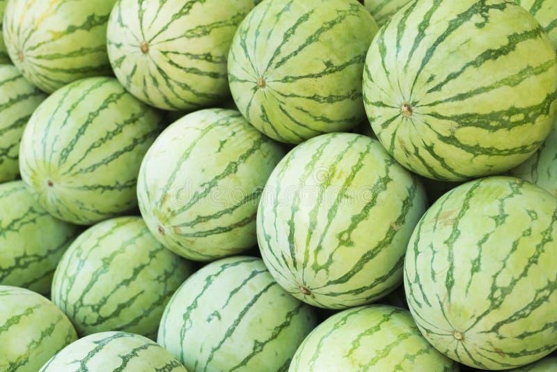 许多绿色美好的西瓜小组 免版税图库摄影