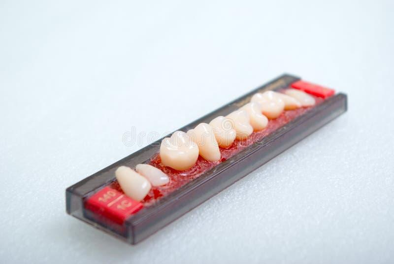 设备铸造义肢牙 库存图片
